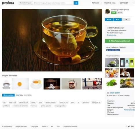 Pixabay : plus de 780000 images gratuites en CC0 | Gestion et traitement de l'information | Scoop.it
