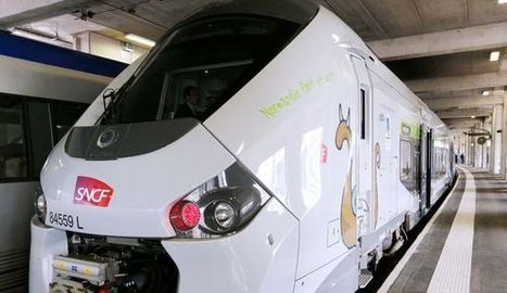 Les TER trop larges de la SNCF et RFF | les nouvelles de Léon Kennedy | Scoop.it