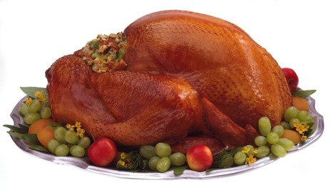 Why Is There White Meat and Dark Meat Turkey? - Chemistry | Lifestyles & Food | Scoop.it