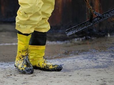 Oil spill puts wildlife in harm's way | Sustain Our Earth | Scoop.it