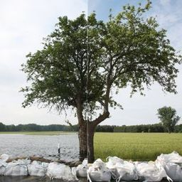 After the Flood: Life in Germany's Disaster Zone - SPIEGEL ONLINE | Sustain Our Earth | Scoop.it