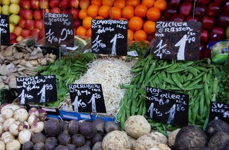 Le nouveau label bio européen pourrait tolérer la présence d'OGM et de pesticides | Chronique d'un pays où il ne se passe rien... ou presque ! | Scoop.it