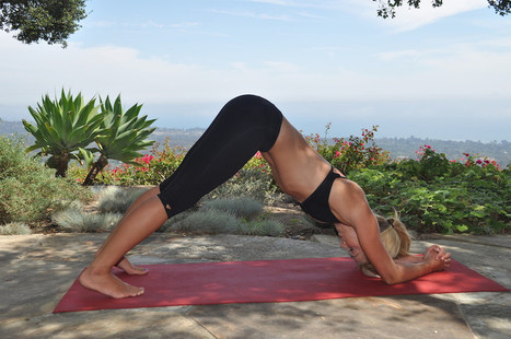 5 Basic Yoga Poses To Make You Feel Fantastic In 15 Minutes | bio-organic´ation | Scoop.it