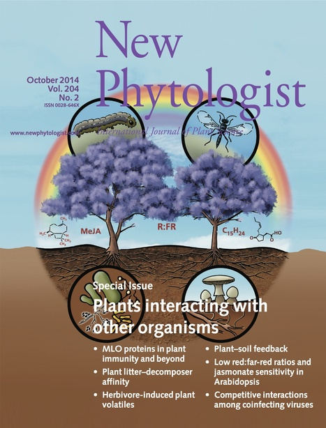 New Phytologist: Special Issue: Plants interacting with other organisms (October 2014) | Pathology | Scoop.it