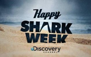 How the Discovery Channel Uses Social Media to Connect With Superfans | Social Engagement | Scoop.it