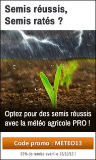 Reportage au semis de blé - En direct, sous couvert : « J'adapte ... - Terre-net | semis direct | Scoop.it