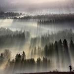 Fog Landscapes | Art, Design and Imagination | Scoop.it
