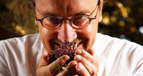 Balade Montagnarde [triptyque étoilé dans les Alpes] | Gastronomy & Wines | Scoop.it