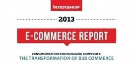 Infographie | Comment les entreprises B to B passent-elles à l'e-commerce ? | Peut-on consommer exclusivement sur internet ? | Scoop.it