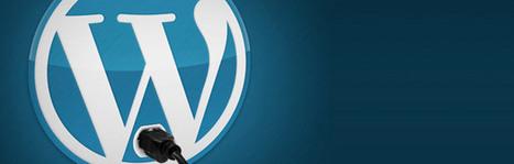 5 plugin per Wordpress che (forse) non conosci   ToxNetLab's Blog   Scoop.it