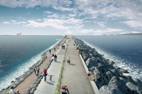 Plans to farm laverbread at Swansea Bay tidal lagoon could see Wales taking on ... - WalesOnline | Marine Energy in Wales | Scoop.it