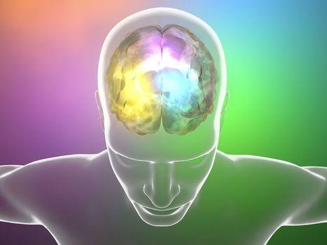 Alzheimer, Parkinson : et si on injectait des neurones dans le cerveau ? | Le pouvoir du transhumanisme | Scoop.it