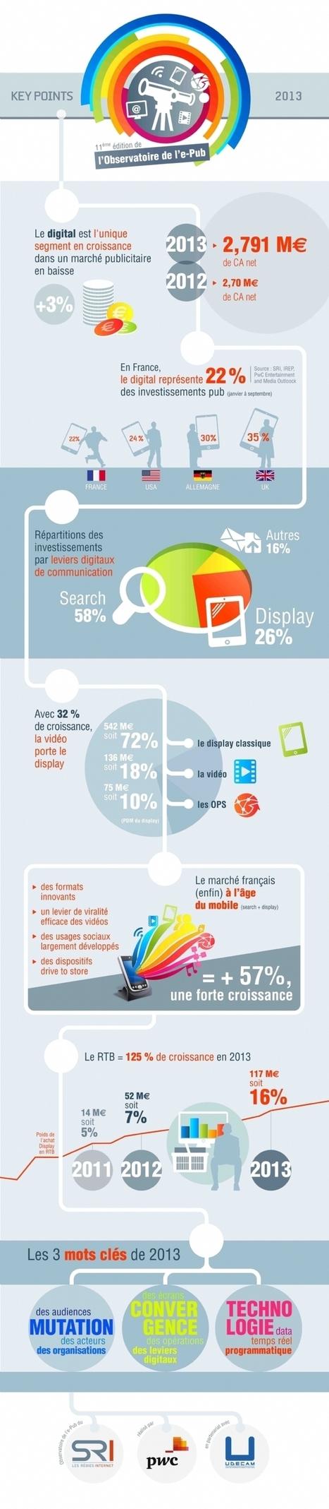 InfographieObservatoire de l'e-pub : onzième édition - Ecommerce Magazine | Digitale | Scoop.it