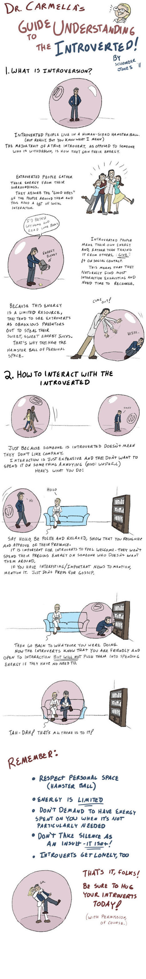 How to Live with Introverts | People Data, Infographics & Sweet Stats | Scoop.it