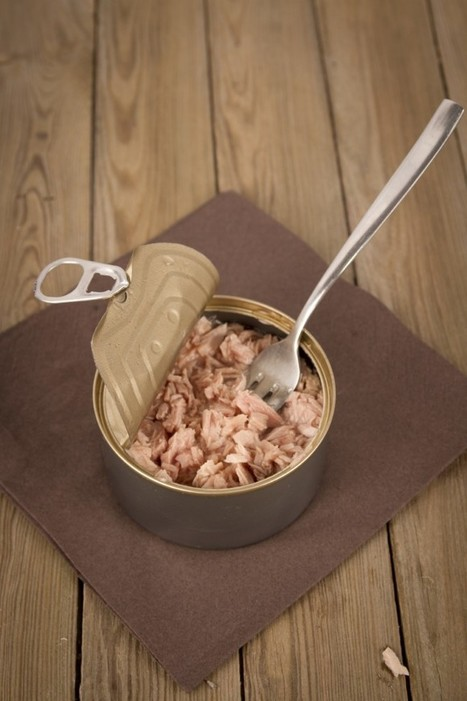 Canned Tuna Is Not Your Friend | health care &  health politics & infographics | Scoop.it