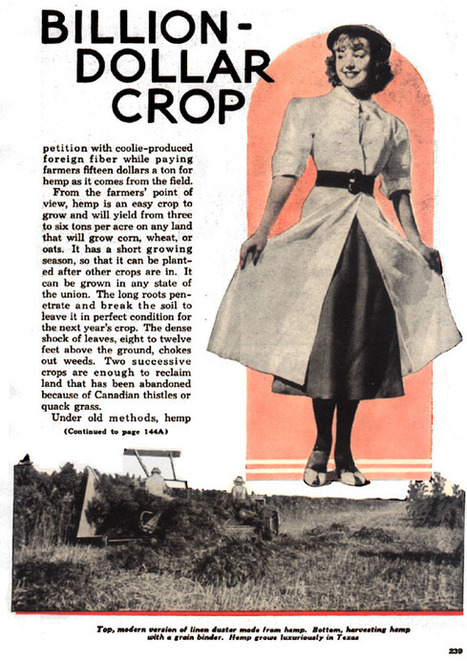 "Mechanics, Popular. ""New billion-dollar crop."" Popular Mechanics Feb (1938): 238-238. | Cânhamo Industrial | Scoop.it"