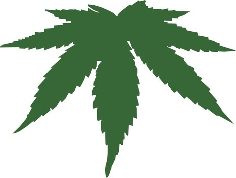 Medical Use of Cannabis over Time   Healthy Fitness Life   Scoop.it