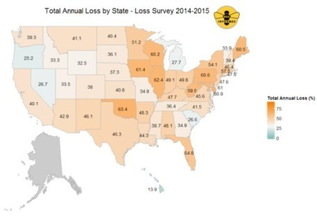 Honeybees devastated by second highest bee die-off on record in 2014   Why we can't have nice things   Scoop.it