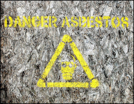 Asbestos must be stripped from Dutch homes by 2024 - NL Times | Asbestos | Scoop.it