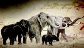 A teoria da evolução de Darwin | Ciências Naturais | Scoop.it