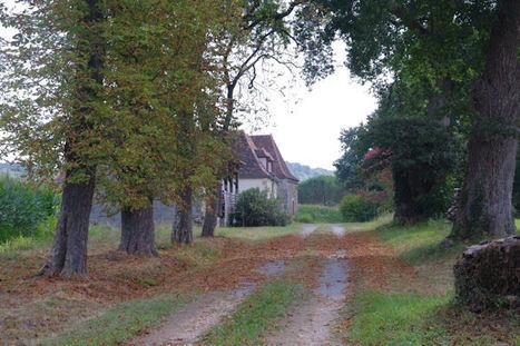 Pomps - Sauvelade | Sur les chemins de Compostelle | Scoop.it