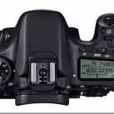 A Guide Switching Camera Systems | Photography Tips & Tutorials | Scoop.it