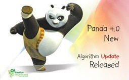 Google Launches Panda 4.0 – Websites Beware and Be Aware | Directory | Scoop.it