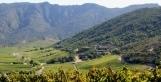 Chili : Cap sur la fraîcheur   Articles Vins   Scoop.it