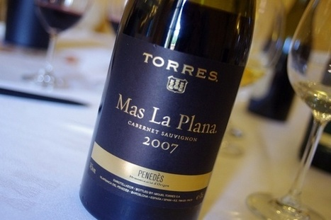 Visiting Torres, an important wine producer in Spain | Wine website, Wine magazine...What's Hot Today on Wine Blogs? | Scoop.it