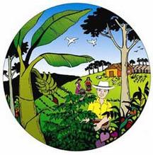 Cómo acabar con el modelo insostenible de Agricultura Capitalista | La R-Evolución de ARMAK | Scoop.it