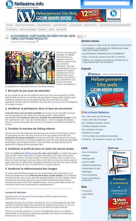 Netissime vole du contenu ! - Entre pros   Actualité Web, SEO & Marketing   Scoop.it