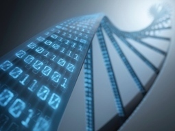 Biology software Cello promises easier way to program living cells | Amazing Science | Scoop.it