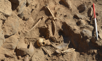 Egypt's ancient history reveals itself anew as Roman warrior skeleton discovered | Biology: The Only Subject Where Multiplication and Division Are the Same Thing | Scoop.it