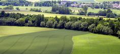 Quand les pratiques agricoles sont au service de la biodiversité - Actu-environnement.com | éco-hameaux, écoquartiers et villes durables | Scoop.it