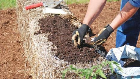 Gardening tips: Create a garden anywhere with straw bales | Gardening | Scoop.it