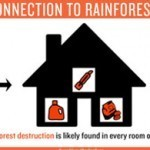 Palm Oil's Dirty Secret: The Many Ingredient Names For Palm Oil » Rainforest Action Network Blog | Science | Scoop.it