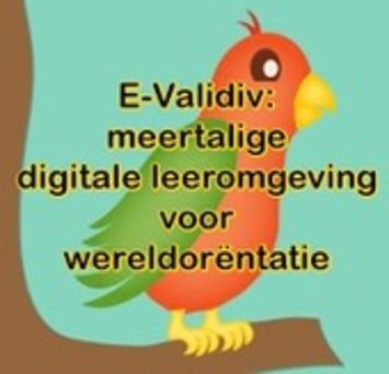 'E-Validiv': Een gratis meertalige digitale leeromgeving. Haal meer uit taal! | Edu-Curator | Scoop.it