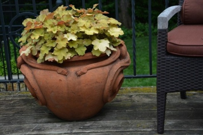 The Deck Pots   Dirt Simple   Container Gardening   Scoop.it