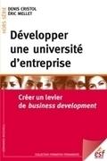 Universités d'entreprise, nouvelle concurrence pour les business schools ?   Business research   Scoop.it