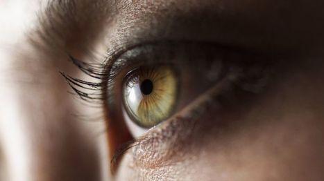 Google's DeepMind to peek at NHS eye scans for disease analysis - BBC News | web learning | Scoop.it