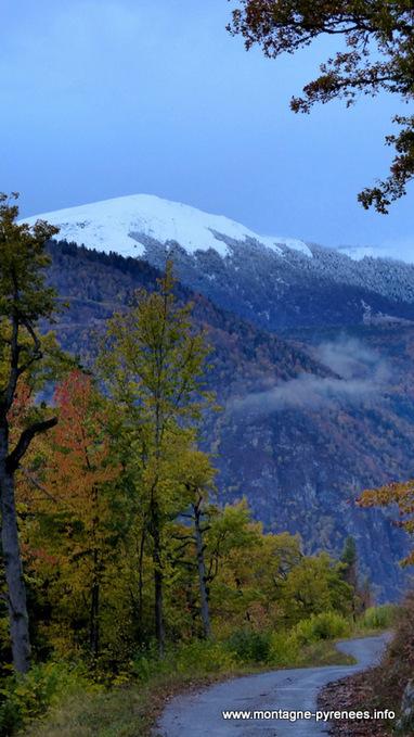 Sur les hauts de Camparan - Montagne Pyrénées | Vallée d'Aure - Pyrénées | Scoop.it