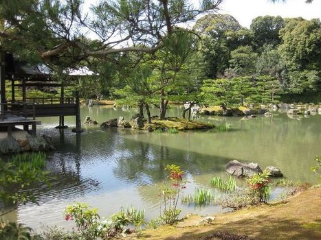 When Beauty led to destruction (Yukio Mishima: The Temple of the Golden Pavilion)   The Temple of the Golden Pavilion   Scoop.it