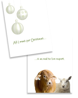 This Christmas - End live export | RSPCA Australia | For all creatures, great & small. | Nature Animals humankind | Scoop.it