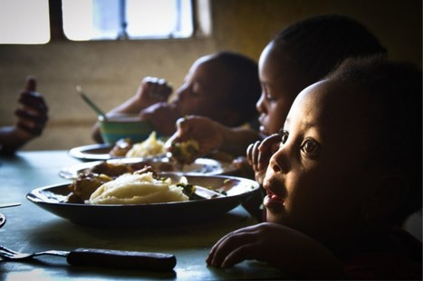 Rome based agencies work together to ensure food security in Mozambique | NGOs in Human Rights, Peace and Development | Scoop.it