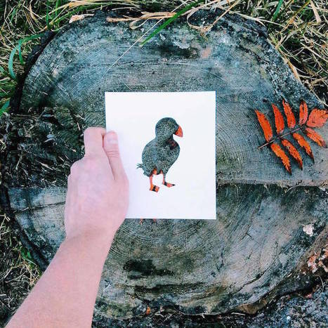 Cutout Paper Animals Silhouettes Colored by Natural Landscapes   Bouche à Oreille   Scoop.it
