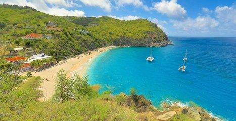 ST Barth : restauration des récifs coralliens   EnezGreen   Tourisme insulaire durable   Scoop.it