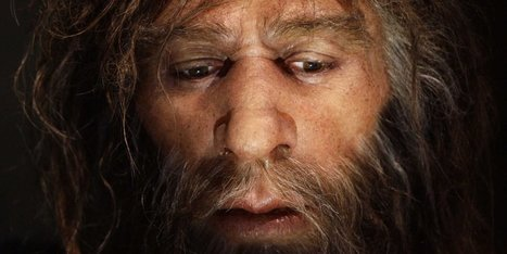 Here's why human women probably struggled to have babies with Neanderthal men | Aux origines | Scoop.it