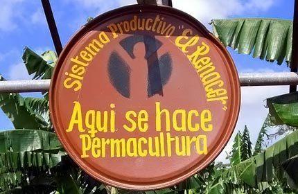 L'agroécologie : le modèle d'agriculture urbaine de CUBA | agriculture urbaine | Scoop.it