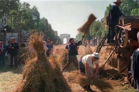 1990 - La Grande Moisson des Champs Elysées   Voyages et Gastronomie depuis la Bretagne vers d'autres terroirs   Scoop.it