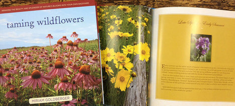 Home - Pittsburgh Garden publishing company - St. Lynn's Press | Natural Soil Nutrients | Scoop.it
